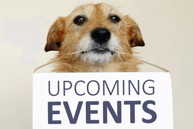 Upcoming Pet Events in USA.
