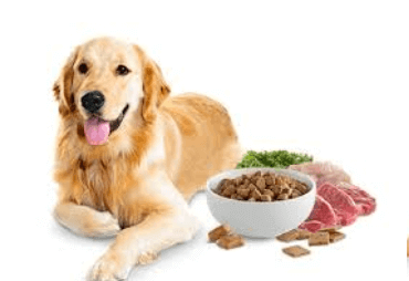 ultimate guide for dog food