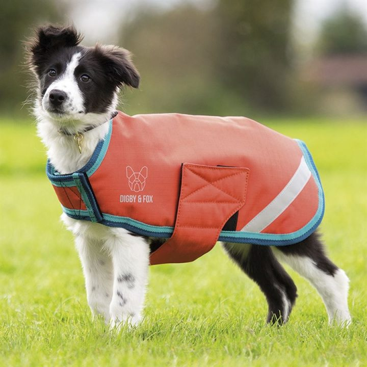 Waterproof-Dog -Coat