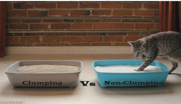 clumping - Cat - Litter
