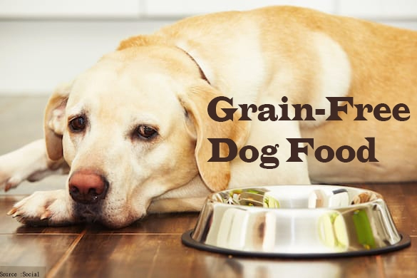 Grain-Free-Dog-Food