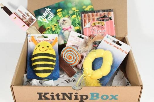kittnip-box-cats-Subscription-box