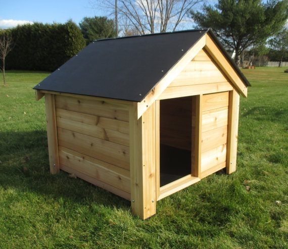 Outdoor-Dog-Kennels