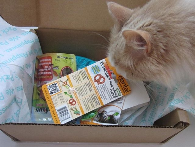 Whisker-Box - Cat-Subscription-Box