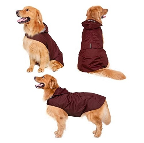 Zellar-Dog-Raincoat-with-Hood