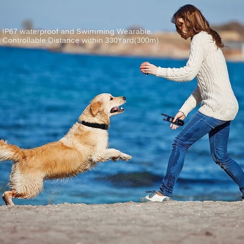 Remote-Dog-Training-Collars