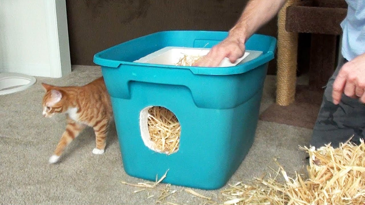 Feral Outdoor Cat Shelter