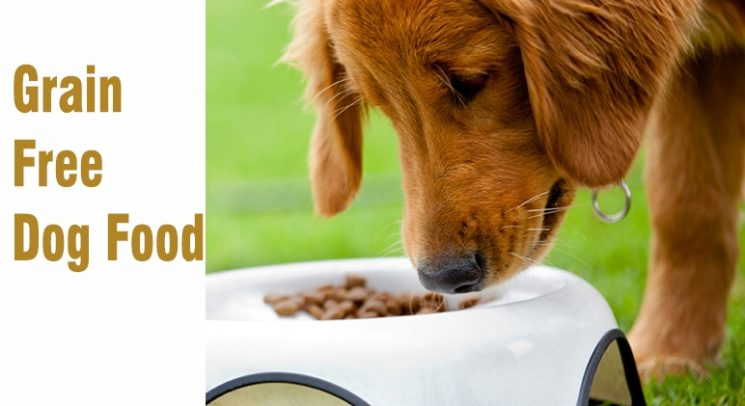 Grain - Free - Dog - Food