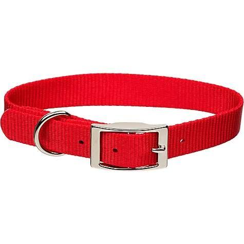 nylon-dog-collars
