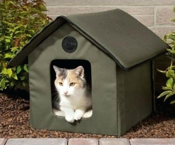 Outdoor - Cat - Shelter - feral
