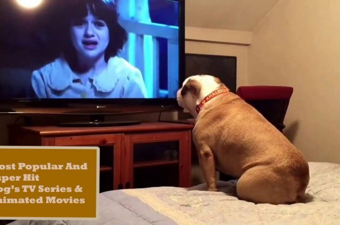 Most Popular & Superhit Dog TV Series And Animated Movies