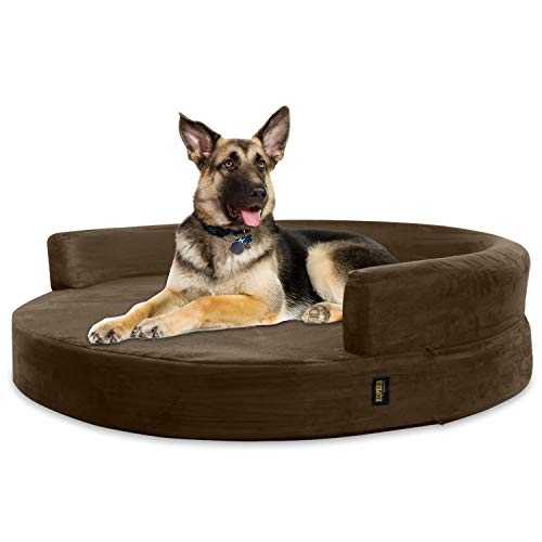 Dog - kennel - bed