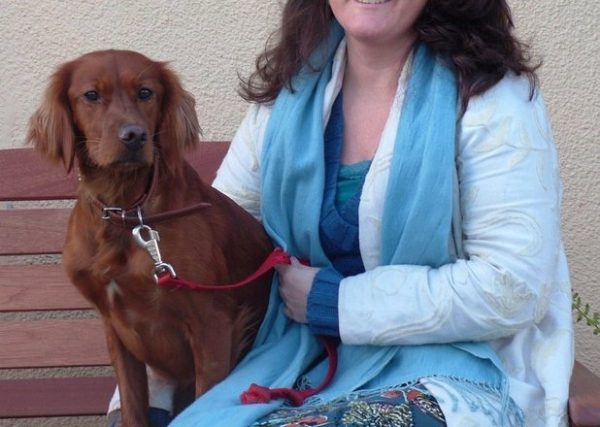 Irish-setter-dog-breed