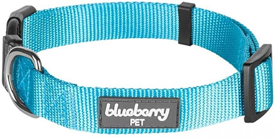 Blueberry Pet Dog Collar