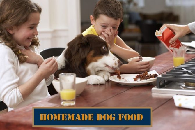 homemade-dog-food