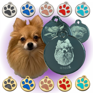 Dog cat glitters tag