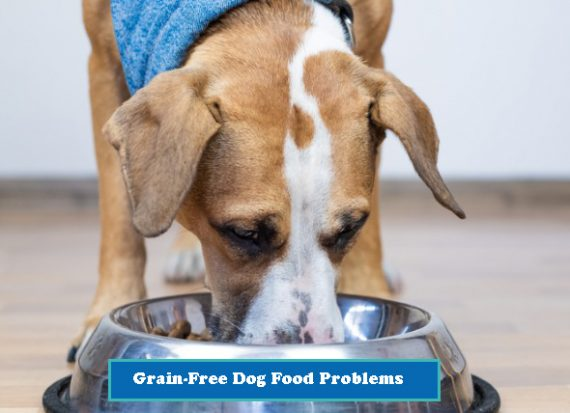 Grain-free-dog-food-problems