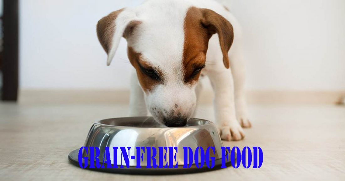 Grain-free-dog-food-pros-and-cons